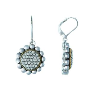 Sophisticated yet stylish earrings with 14K Gold wire and Swarovski