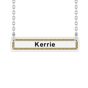 Solid Sterling Silver Horizontal Bar Necklace with 14k Gold Wired Border on 18 inch Rope Chain